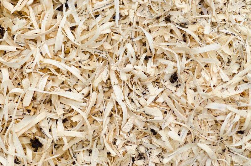 recycled plant fibres building materials